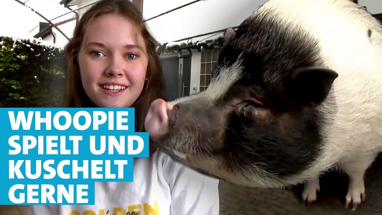 Download Familie Eckert und ihr Hausschwein Whoopie