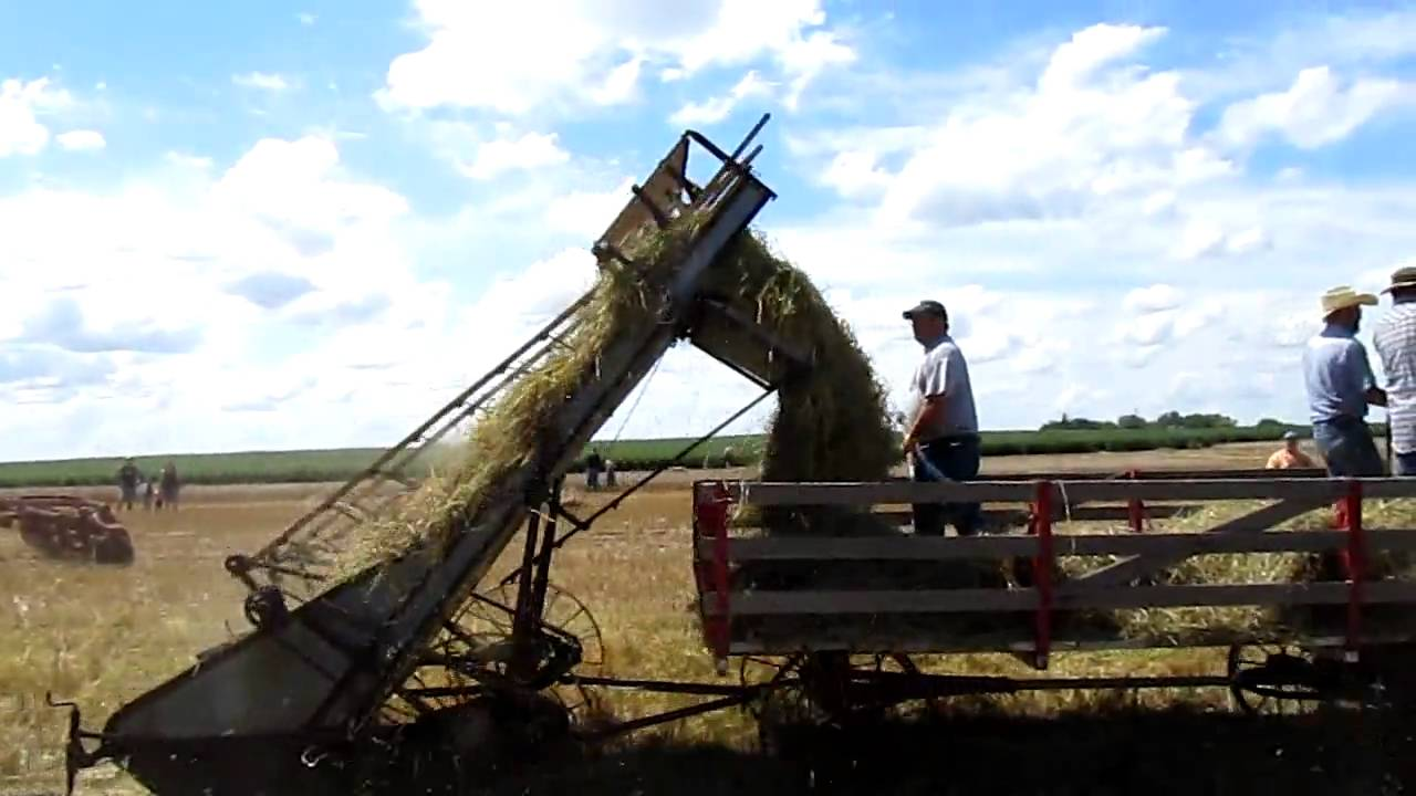 horse drawn hay loader youtube