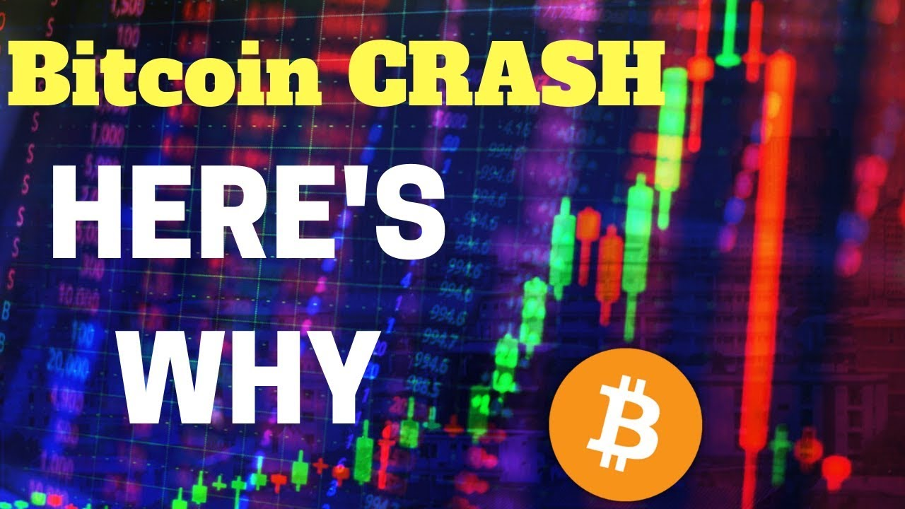 BITCOIN & CRYPTO NOVEMBER MARKET CRASH EXPLAINED - What's Next?