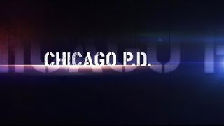 Chicago P.D. Season 1 Reviews: A Material Witness