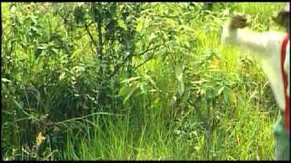 Pushpa Chhori [Full Song] Chaunthi Maa Ku Til