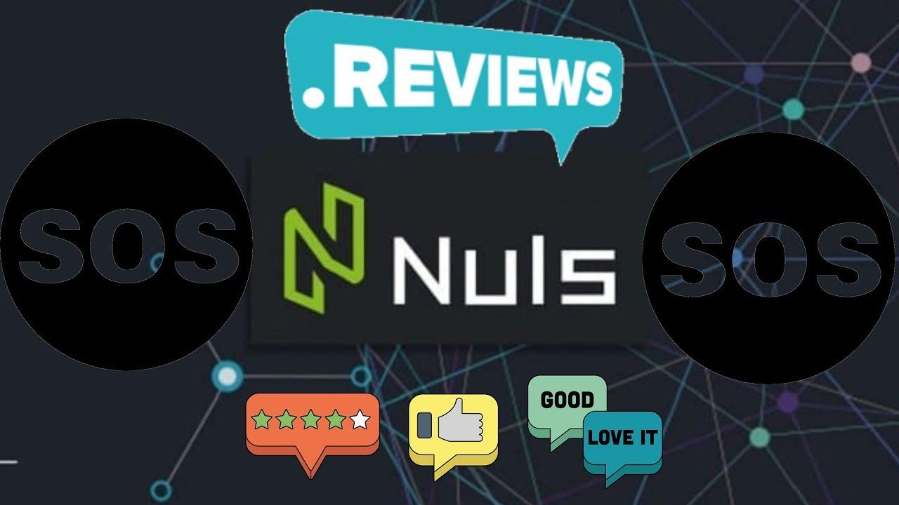Криптовалюта NULS обзор, перспективы, новости 2020. Криптообзоры Нулс