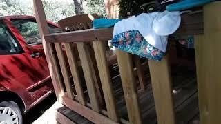 Me voy de viaje al camping Bassegoda Park en Albanyà (Catalunya)