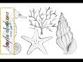 Nautical Sea Life Drawings | How to Draw Starfish Coral Seahorse & Seashell | Part 1