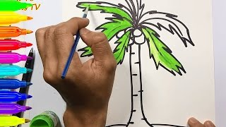How To Draw and Color A COCONUT TREE with Water Color Teaching Drawing for Kids
