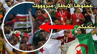 فرحة المصريين بفوز الجزائر بكأس الامم الافريقية