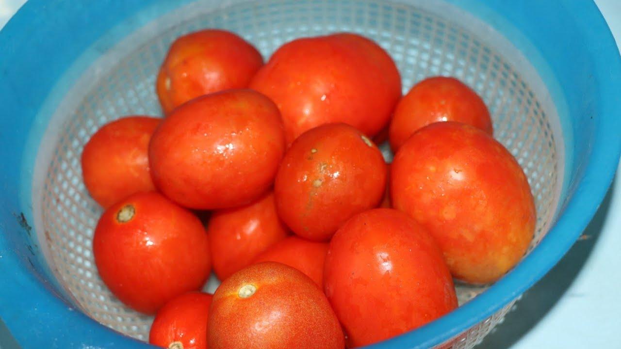 Tomato Chutney   टमाटर की चटनी एक बार बनाओगे महीनों तक स्टोर कर के खाओगे   Jahan Ara's Kitchen