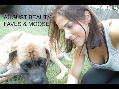 August Beauty Favorites & Moose Update | Mandy Davis MUA