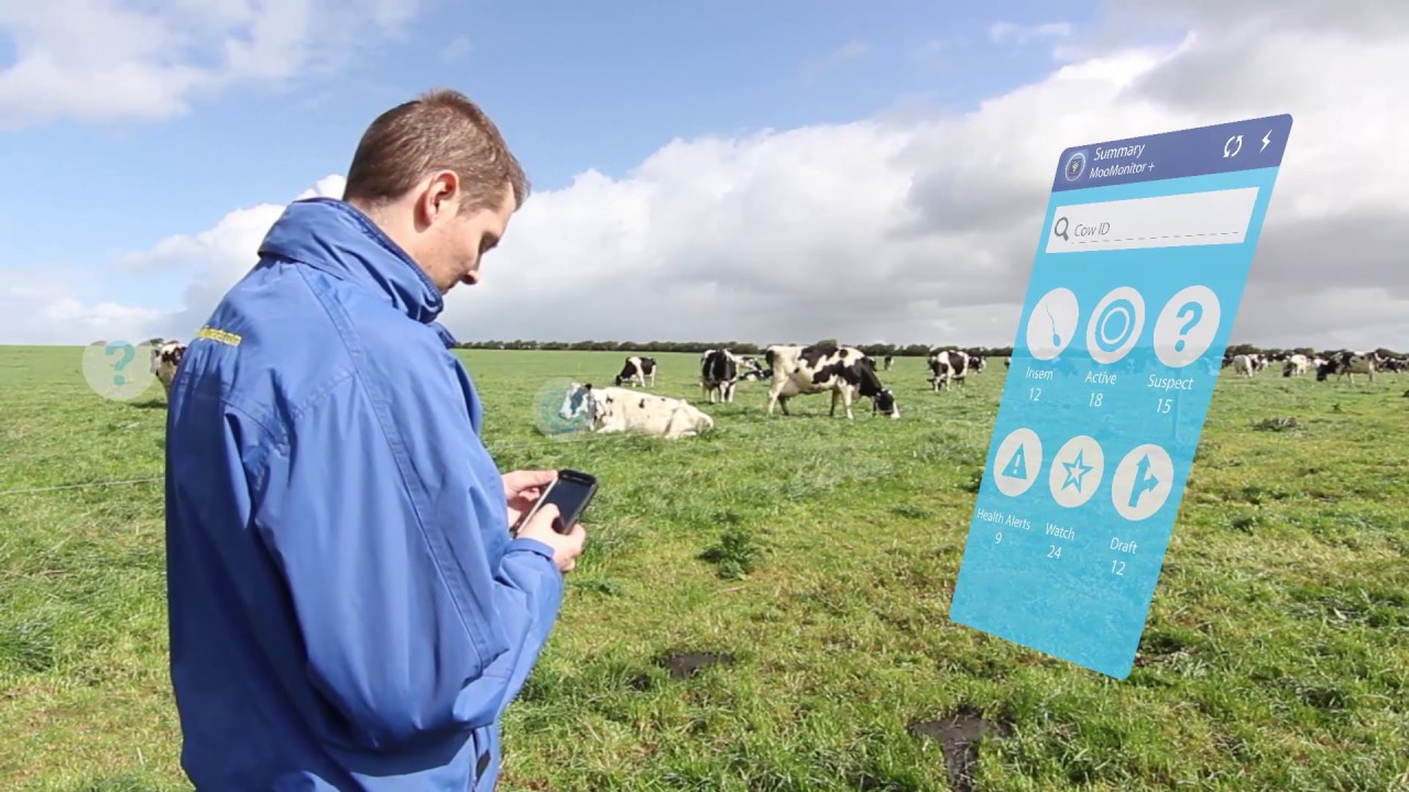 Next Generation cow health & fertility sensor [MooMonitor+]