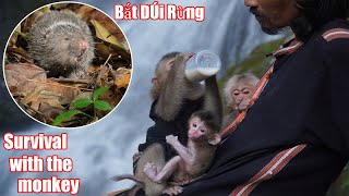 Dúi Rừng Nấu Cùng Rau Thúi • Survival With The Newborn Monkey - Part 3