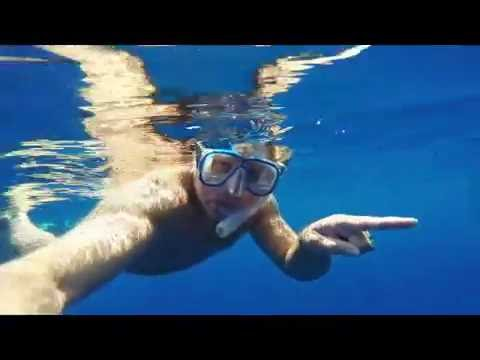 Maiatla Swimming naked with pilot whales 6