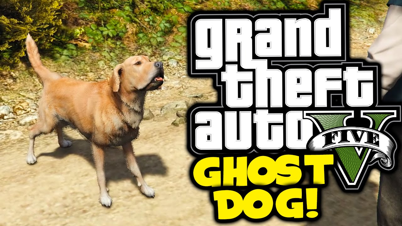 Gta  Secret Ghost Dog Mystery Possible Lost Easter Egg Franklin Talking To Dogs Gta V Youtube