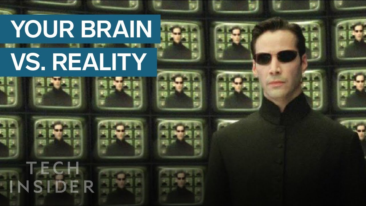 How Your Brain Hallucinates Your Reality