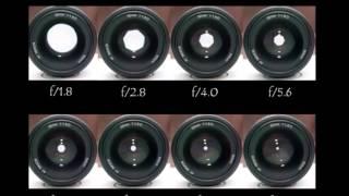Уроки фотографии  Урок 1  Настраиваем камеру