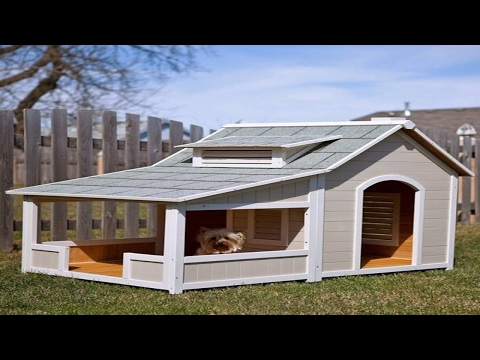 dog-houses-with-free-plans,-you-need-it,-full-ᴴᴰ-█▬█-█-▀█▀