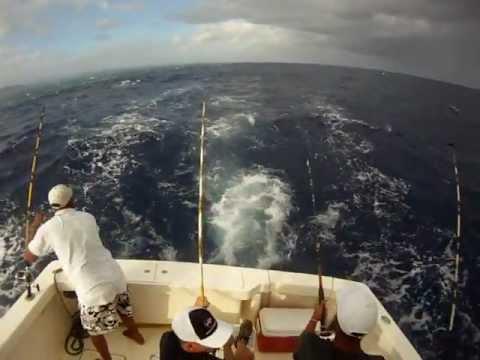 Fishing Puerto Plata Dominican Repubblic
