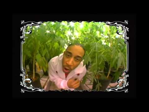 Клип Ludacris - Blueberry Yum Yum