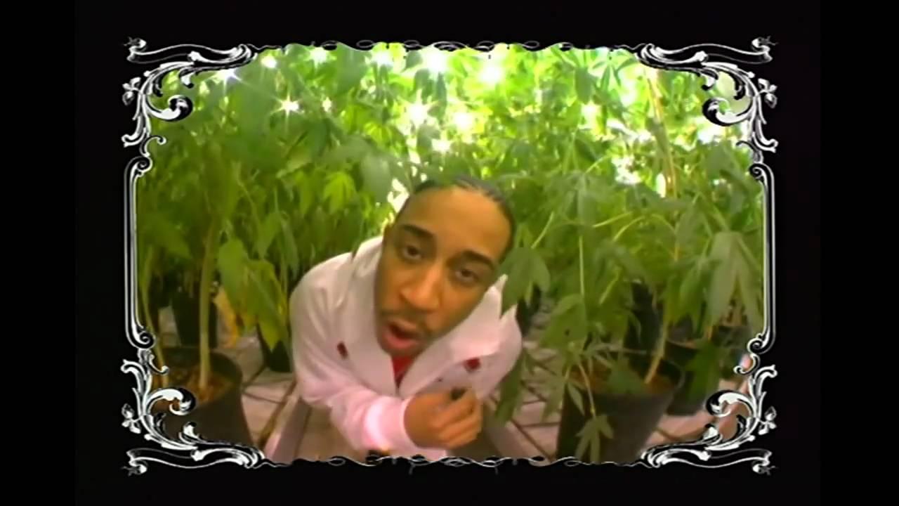 Ludacris blueberry yum yum (dirty+lyrics) youtube.