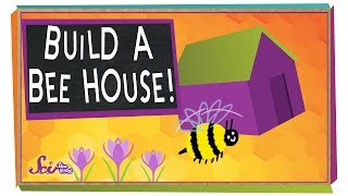 Build a Beehouse!