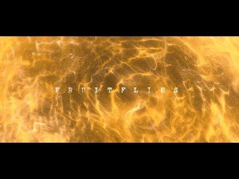 Gabriel Garzón-Montano - Fruitflies (Official Video) // Jardín