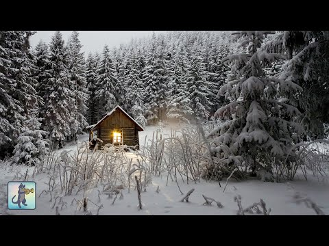 3 HOURS Of Relaxing Snowfall: Beautiful Falling Heavy Snow - The Best Relax Music 1080p HD #2