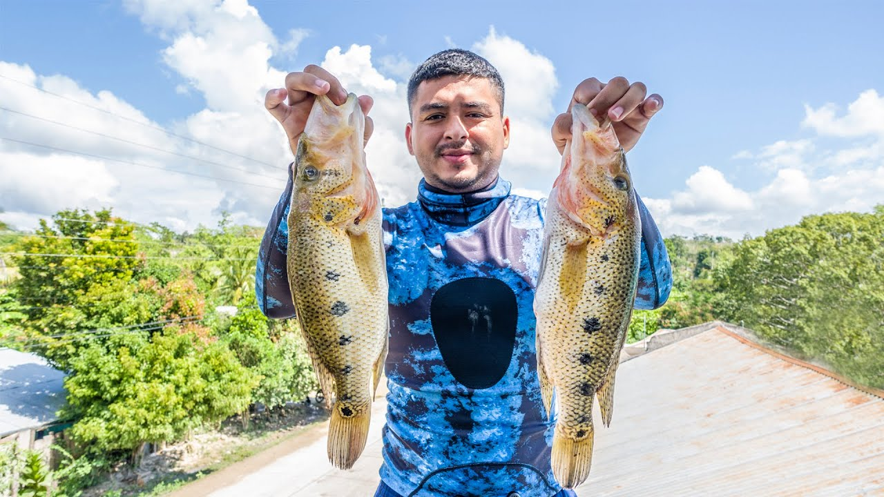 Pesca y Cocina Enormes Capturas del Pez Blanco Con Arpón