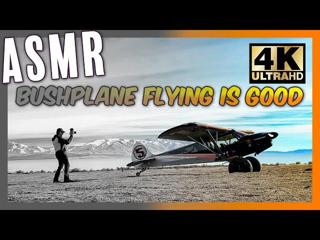4k ASMR REAL Bushplane Flying