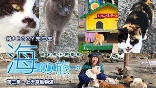 【#上天草動物遊】陪PEGGY先生去熊本上天草市海之旅・第三集