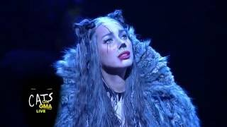 Cats Broadway Cast Performs LIVE Medley on