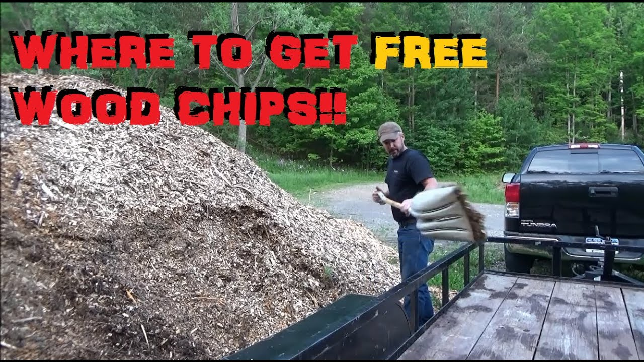 Where To Get Wood Chips ~ Where do i get free wood chips youtube