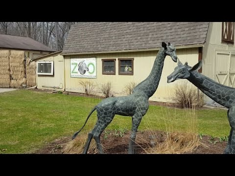 Burly Teacher @ Indian Creek Zoo, Lambertville, MI