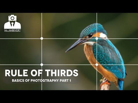 rule-of-thirds---basics-of-photography-part-1