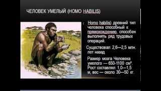 Антропогенез презентация по биологии
