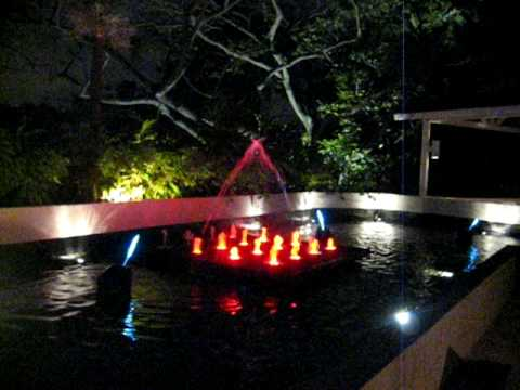Water feature @ Jewel Box