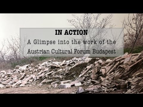 In Action - A Glimpse into the Work of the Austrian Cultural Forum Budapest