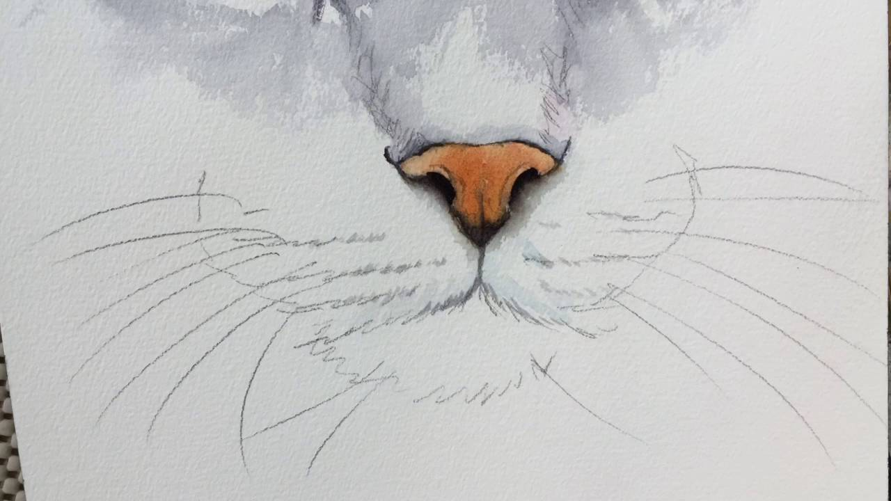 How to paint a cat\u0027s nose