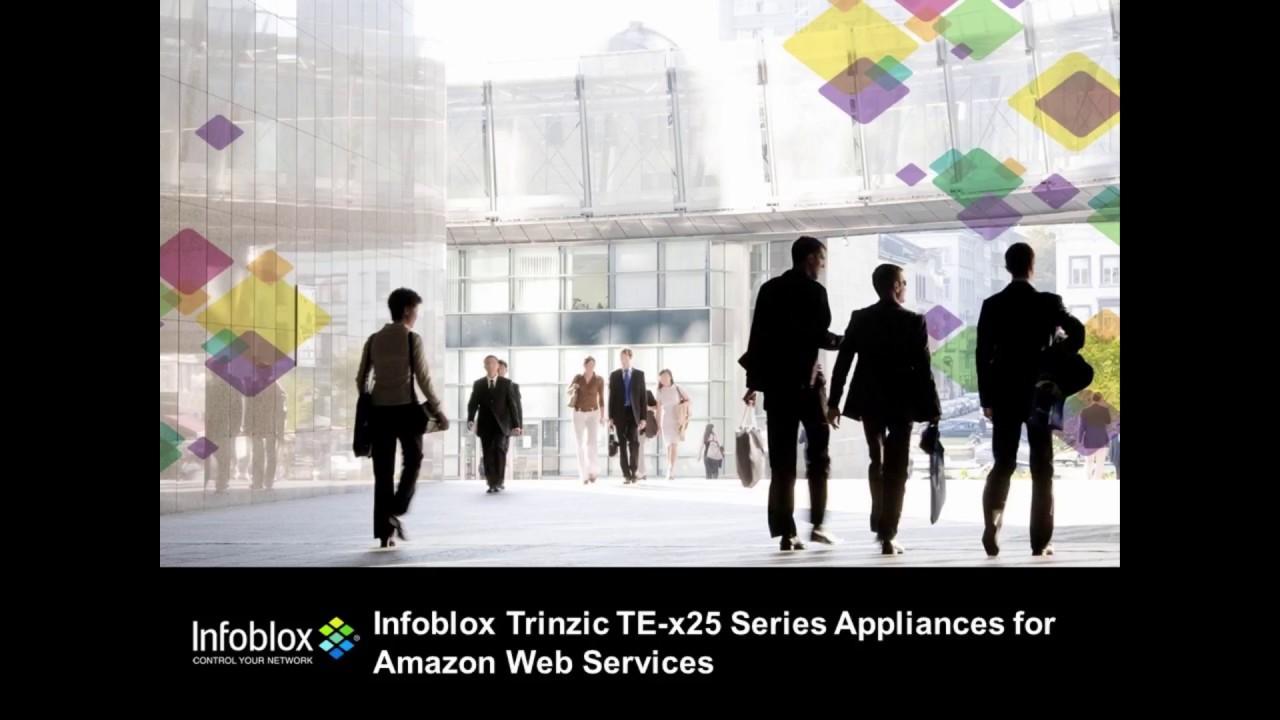 Deploying Infoblox Virtual Appliance TE-x25 series (NIOS 8 2 1) in AWS