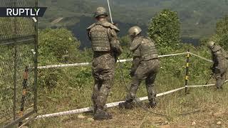 Военные КНДР и Южной Кореи проводят разминирование демилитаризованной зоны