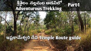 Sri Istakameswari Devi Temple , Srisailam details ||Route to Istakameswari Devi AmmavariTemple-Part1