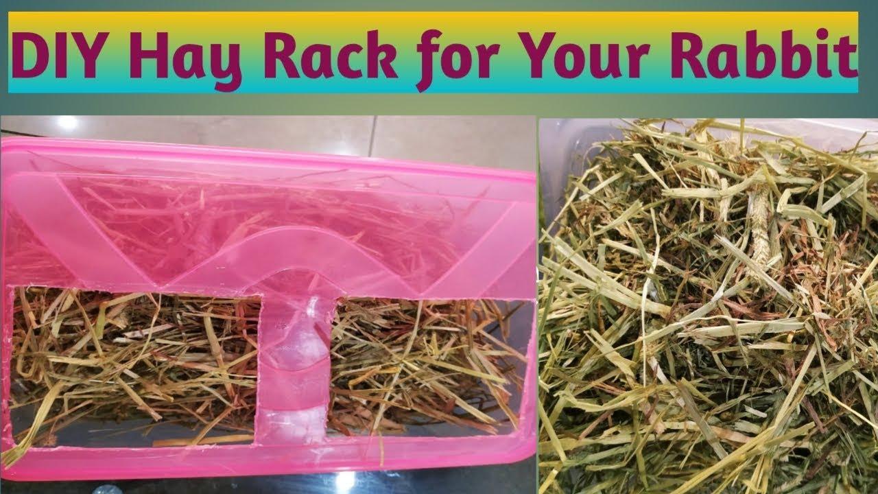 diy hay rack for rabbits easy rabbit feeder
