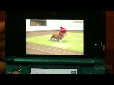 Nintendogs + Cats: Toy Poodle & New Friends - Incorrigible Corgi