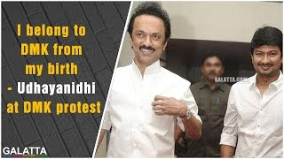 I belong to DMK from my birth - Udhayanidhi at DMK protest