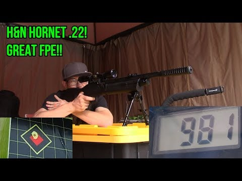 BEST METAL TIP PELLETS Ep  4 Of 4 H&N Hornet 22 FULL REVIEW