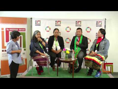 "UNPFII16 Facebook Live on ""Struggle over indigenous lands and territories"""