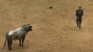 The Beast Pit: American Freestyle Bullfighting -  Knox Dunn | 2019 Albuquerque