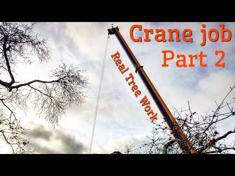(RAW) (Crane work ) The one job where i almost cut my thumb off with a chainsaw  final part.