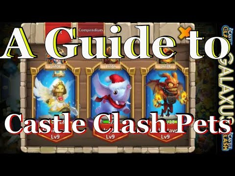 Pets Hero Combinations Overview: A Guide To Castle Clash Pets