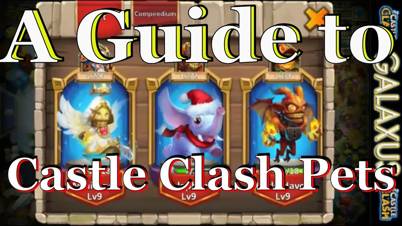 Pets Hero Combinations Overview A Guide To Castle Clash Pets Youtube