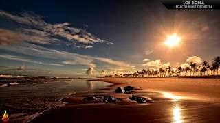 1 Hour Relaxing Bossa Nova Music | Lox Bossa - Eclecto-Hijinx Orchestra