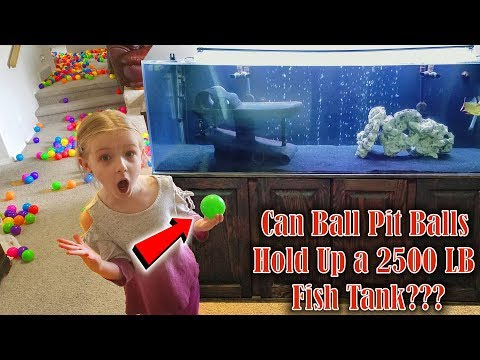How To Move A 2500 LB Fish Tank With Only Ball Pit Balls!!! 250 Gallon Aquarium